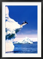 Framed Penguin Flight