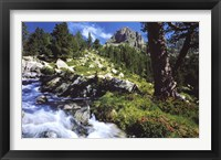 Framed Mountain Creek
