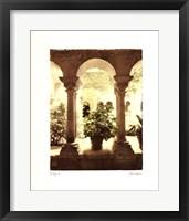 Framed St.Remy II