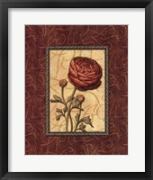 Red Passion I Framed Print
