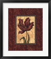 Red Passion II Framed Print