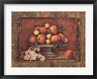 Florentine Peach Framed Print