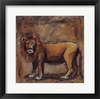 Safari Lion Framed Print