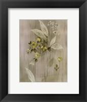 Summer Silk II Framed Print