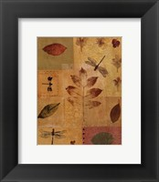 Framed Dragonflies I