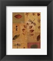 Framed Dragonflies I