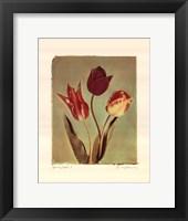 Framed Spring Color I