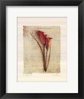 Messages II Framed Print
