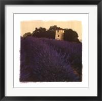 Bayliss Ranch Framed Print