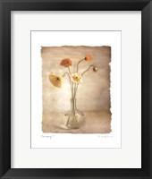 Harmony I Framed Print