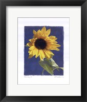 Summer I Framed Print
