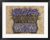 Framed Blue Irises