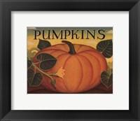 Framed Pumpkins