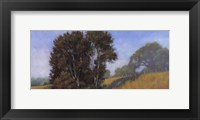 Sauvie's Island Framed Print