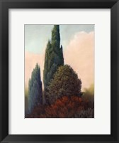 Framed Tuscan Trees I