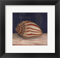 Framed Striped Shell
