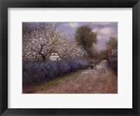 Framed Blossom Lane