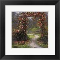 Framed Rose Arbour I