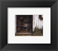 Framed Old Faithful