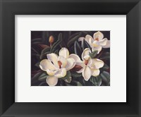 Framed Bountiful Magnolia