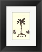 Tropical Palms II Framed Print