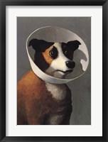 Framed Filmhound