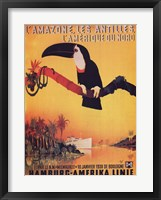 Framed L'Amazone les Antilles