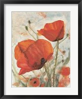 Framed Tuscany Poppies I