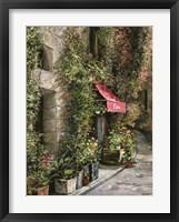 St.Moritz Cafe Framed Print