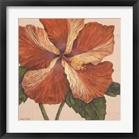 Framed Island Hibiscus I