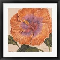 Framed Island Hibiscus II