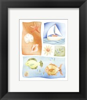 Framed Set Sail
