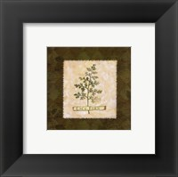 Lace Fern Framed Print