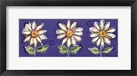Framed 3 White Daisies