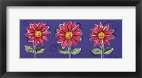 3 Pink Daisies Framed Print