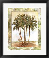 Framed Palm Tree III