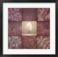 Gentle Radiance II Framed Print