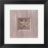 Beadboard Starfish Framed Print