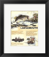 Framed Large Mouth