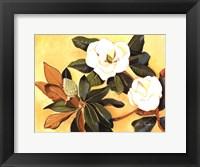 Framed Southern Magnolia I
