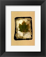 Framed Kyoto Leaves V
