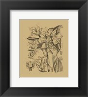 Framed Orchid on Khaki(WG) V