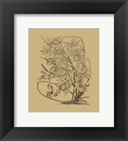 Framed Orchid on Khaki(WG) VI