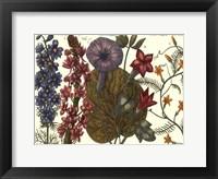 Framed Printed Arena Botanical IV