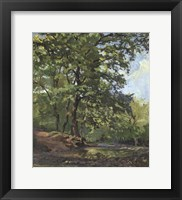 Framed Oak Forest