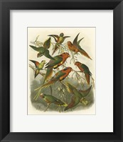 Framed Red Cassel Birds I