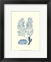 Shades of Aqua II Framed Print