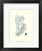 Shades of Aqua III Framed Print