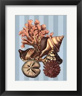 Shell and Coral on Aqua I Framed Print