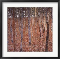 Framed Beechwood Forest, c.1903